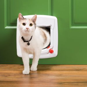Cat Flap Installers Long Crednon