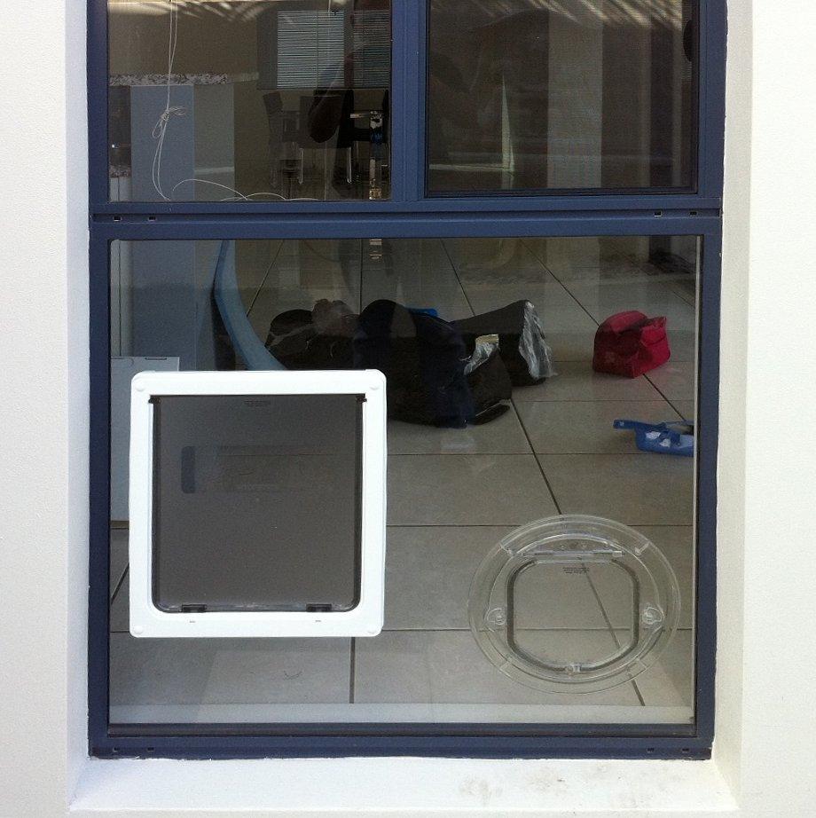 Dog Flaps Cj Glass Glazing